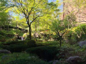 箱根、温泉、旅